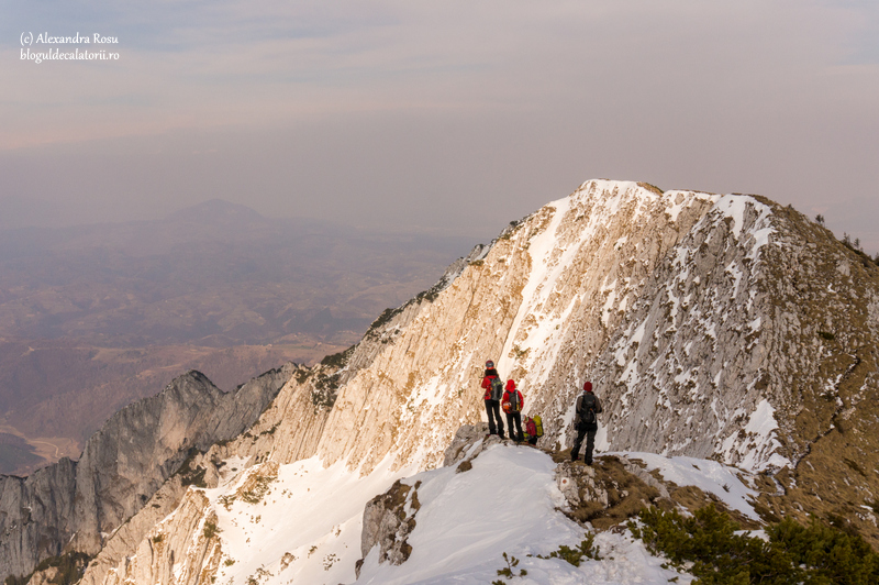 panorama creasta pietrei craiului iarna