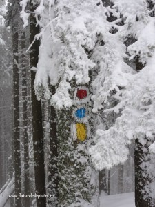 iarna pe valea crapaturii