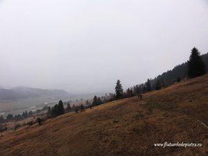 vale marcata piatra craiului