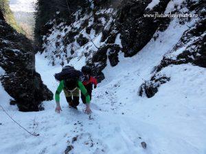 Valea Seaca dintre Clai iarna Bucegi