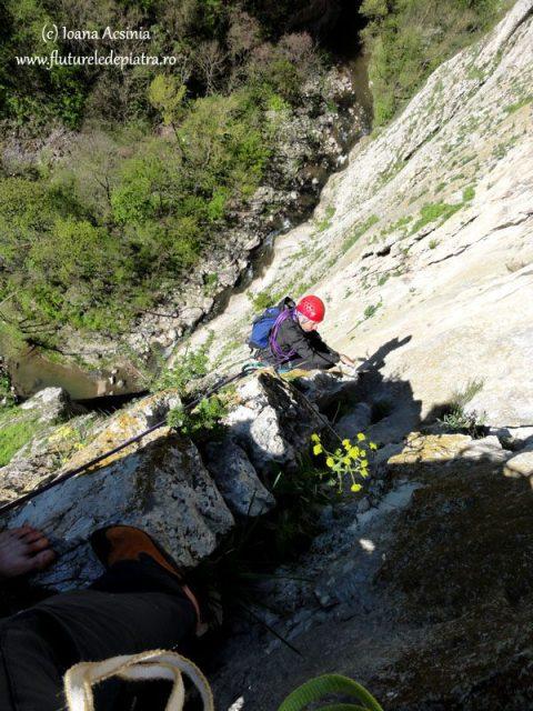 alpinism peretele urias, cheile turzii