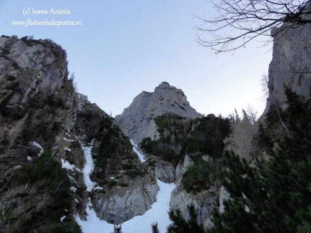 alpinism muntii carpati