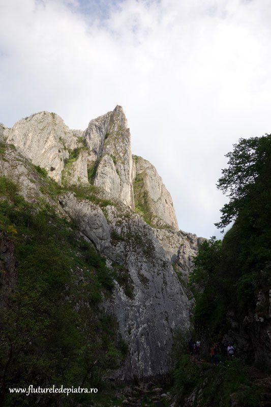 peisaj din cheile turzii