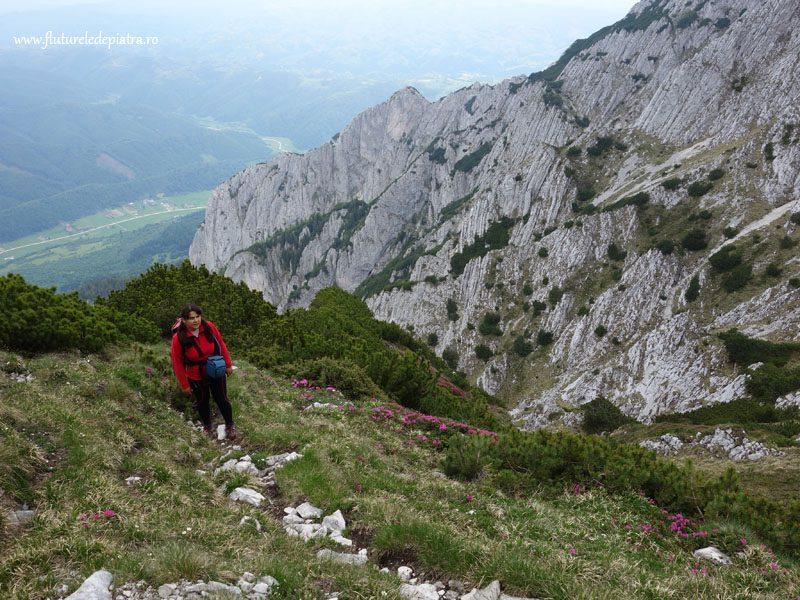 trekking in muntii carpati, romania