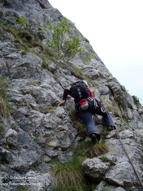 alpinism turnul mare al dianei, piatra craiului