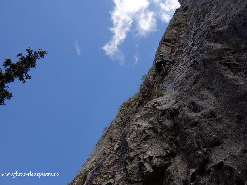 alpinist Piatra Craiului, refugiul Diana, Romania