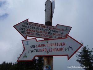 trasee turistice muntii carpati