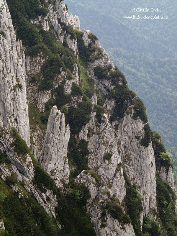 simboluri masivul piatra craiului