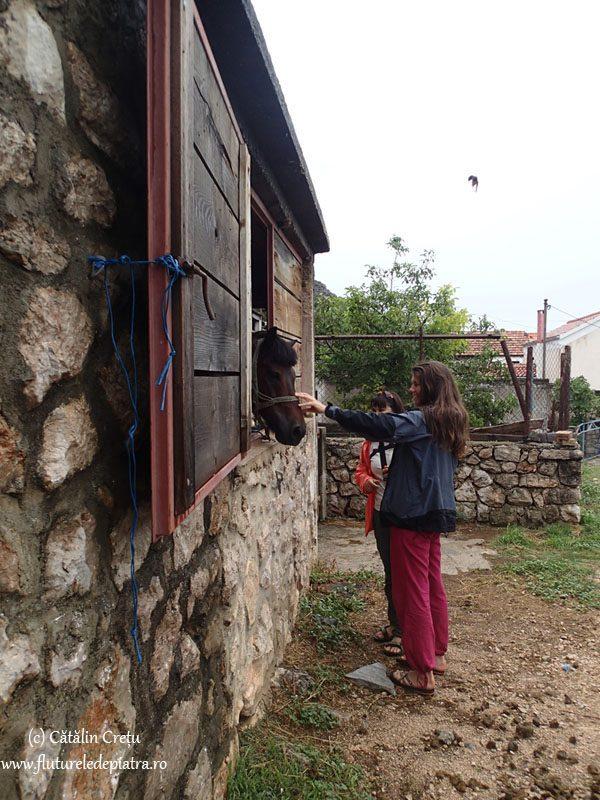 plimbare in Starigrad Paklenica