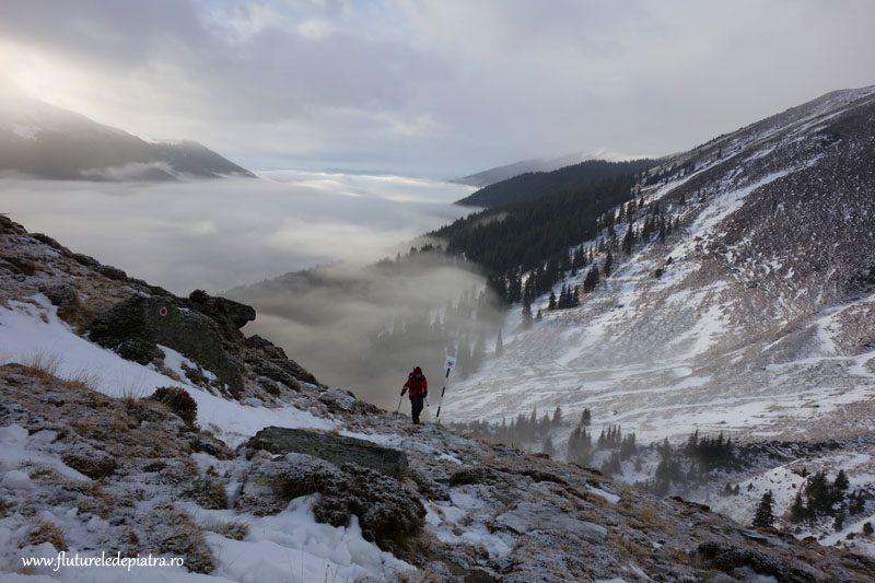 tura in muntii fagaras pe zapada