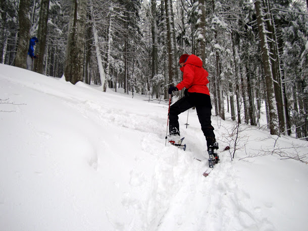 schi de tura sinaia cota 1400