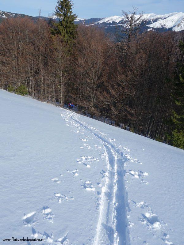 schi de tura muntii baiului