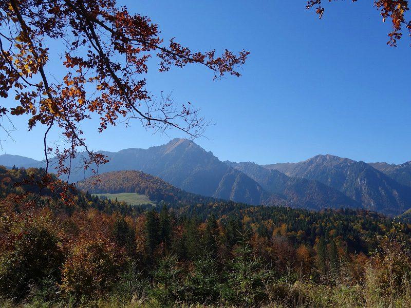 cabana malaiesti muntii bucegi toamna (1)