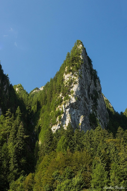 profil perete: Santinela Văii Verzi, Munții Bucegi