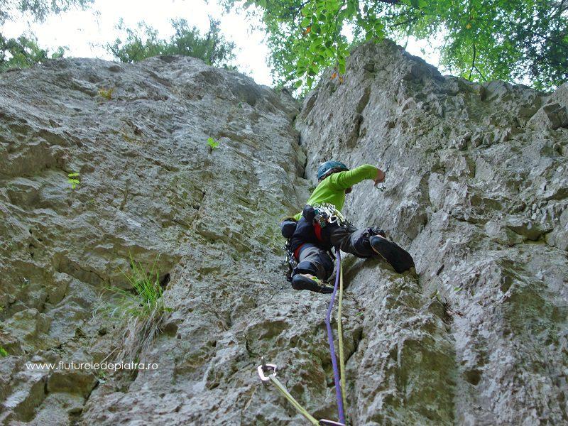Traseu alpinism Diedrul cu Brazi, Masivul Buila - Vânturarița