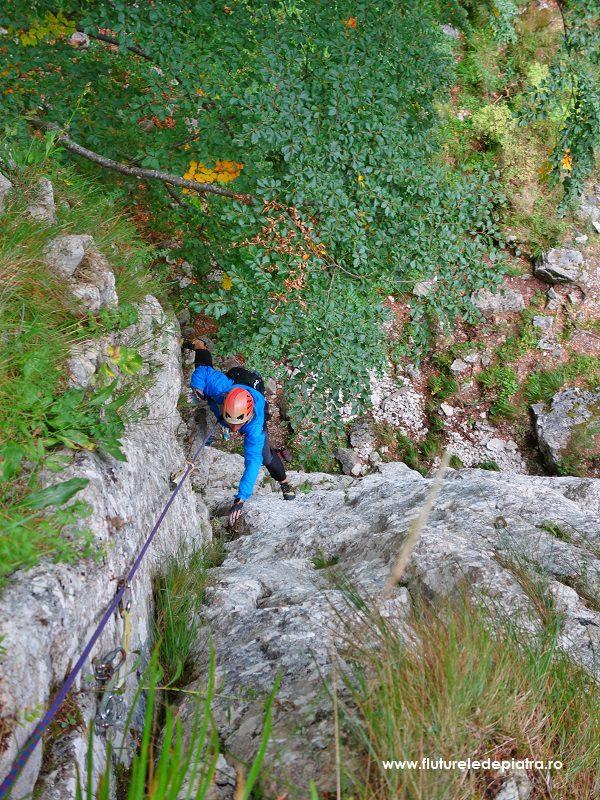 Traseu mai multe lungimi de coardă, Diedrul cu Brazi, Buila Vânturarița alpinism