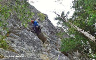 traseul Diedrul cu Brazi, Buila Vânturarița