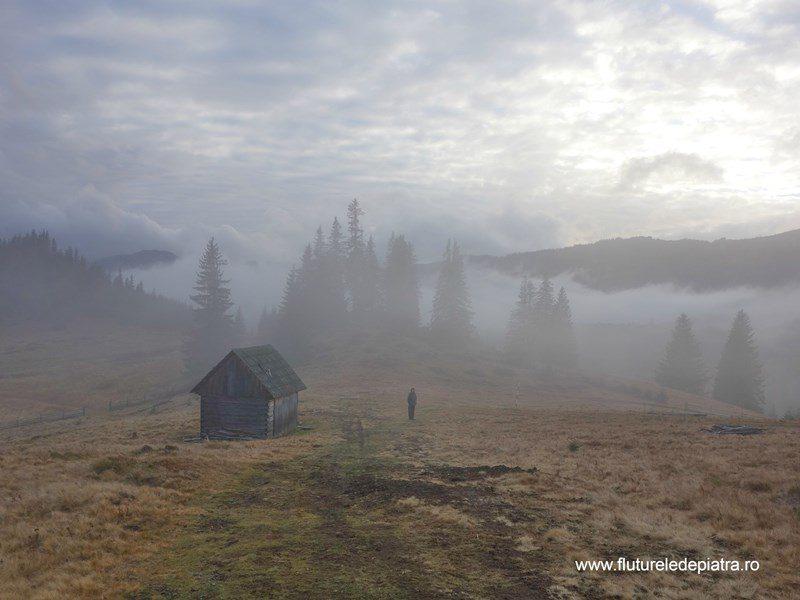 cocioabe în cețuri din munții ardealului, Munții Călimani