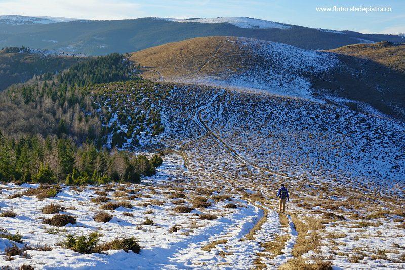 coborârea pe pajiști cu zăpadă, spre satul Poșaga de Sus