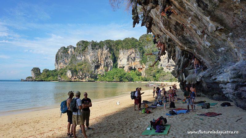 o faleză cu trasee de la 6c în sus, chiar lângă Marea Adaman, escaladă Ton Sai, Thailanda