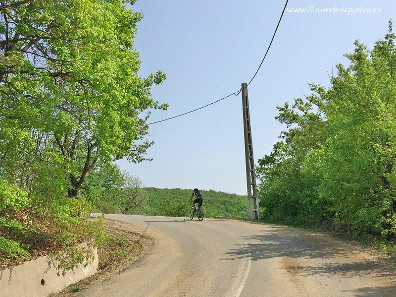 ultima porțiune de asfalt la ieșirea din Sărata Monteoru, traseu mountainbike xc race buzau