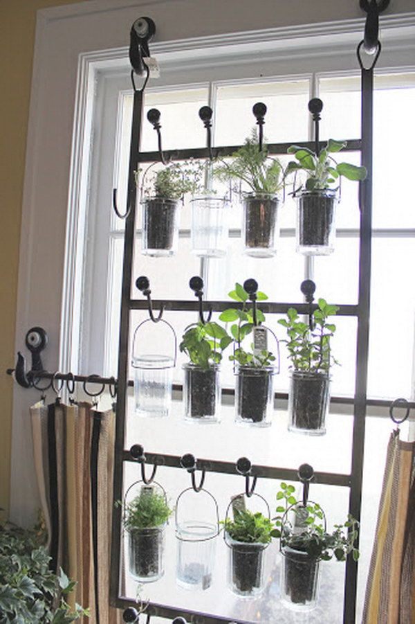 Planters Indoor Hanging Wall