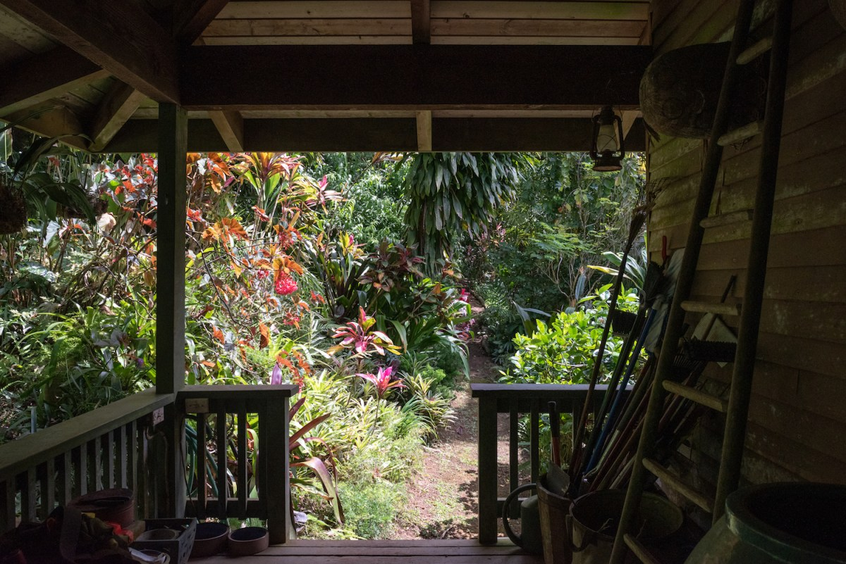 FLUX In Palms & Prose poet William Stanley Merwin