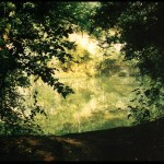 """Belle Island Quarry"", 1997, Richmond, Va, Landscape/Light studies series, C–print"