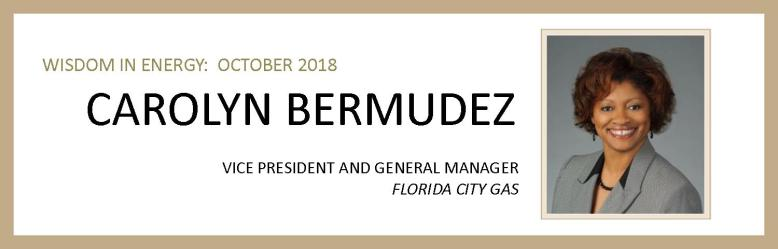 Carolyn Bermudez Email and Interview Banner