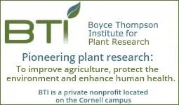 BTI-basic-sponsor