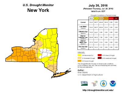 finger lakes drought status