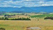 Western Australia to Tax Overseas Property Investors