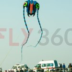 Designer Kite - Kite Flying Show & Event