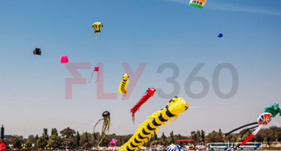 kite for flying - International Kite Festival