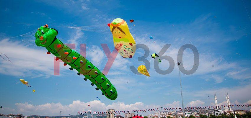 worm kite in sky