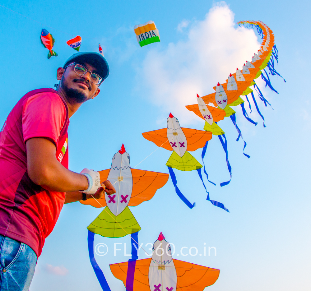 100 kites in a line bird train kite FLY360