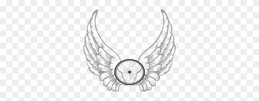 angel wing transparent clip