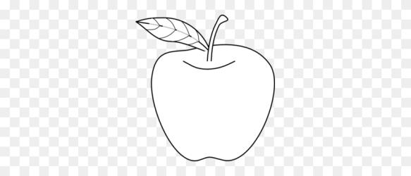Apple Outline Clip Art Apple Stem Clipart Stunning free transparent png clipart images free download