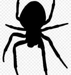 1602x2400 arachnid clipart halloween spider halloween spider clipart [ 840 x 1228 Pixel ]