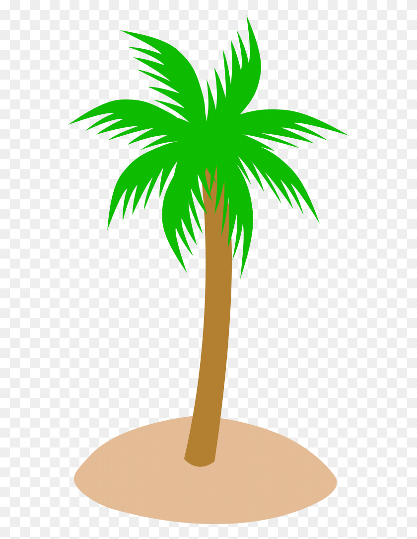 hight resolution of best palm tree clip art coconut tree clipart