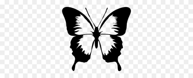 Clipart Butterfly Outline Butterfly Outline Clipart Stunning free transparent png clipart images free download