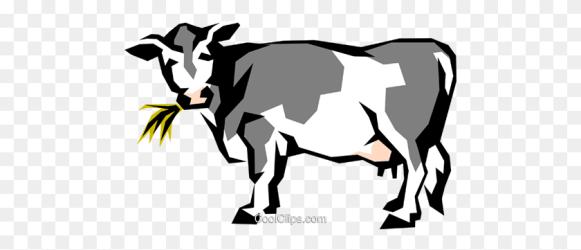 cow milk clipart dairy clip vector illustration cows royalty