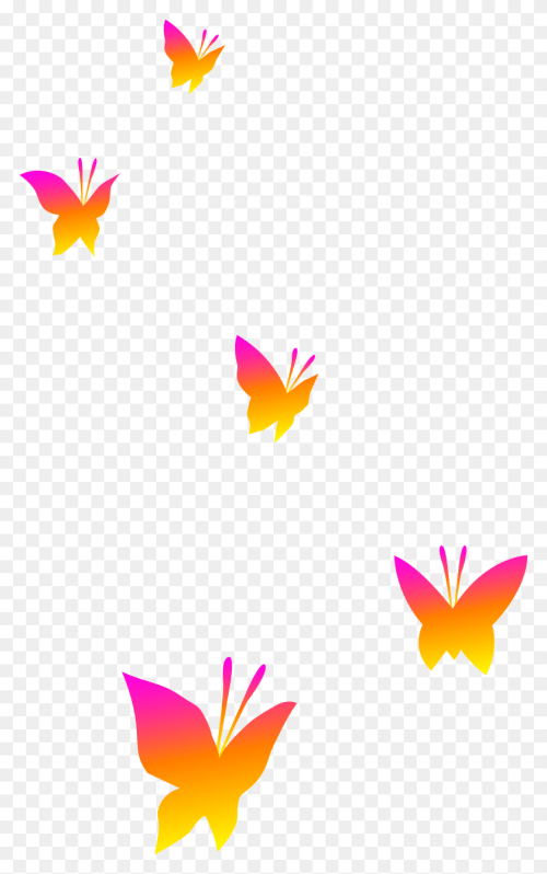 small resolution of half butterfly cliparts butterfly life cycle clipart