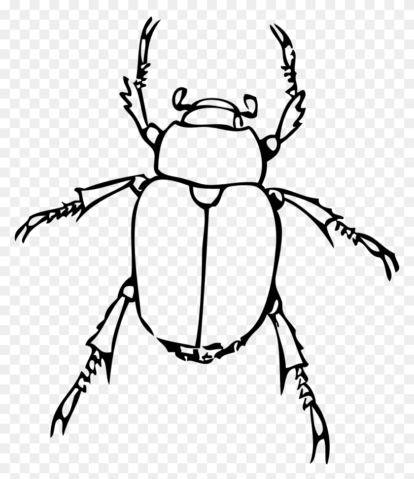 hight resolution of insect clipart black and white bug clipart black and white