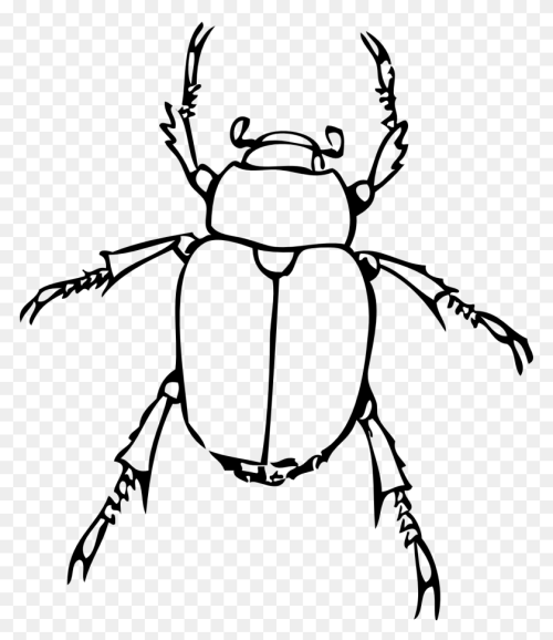small resolution of insect clipart black and white bug clipart black and white