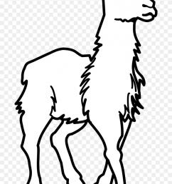 llama all cliparts lama clipart image dallas cowboys clipart black and white [ 840 x 1372 Pixel ]