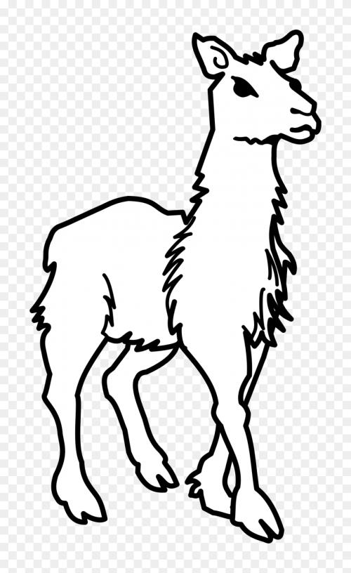 small resolution of llama all cliparts lama clipart image dallas cowboys clipart black and white