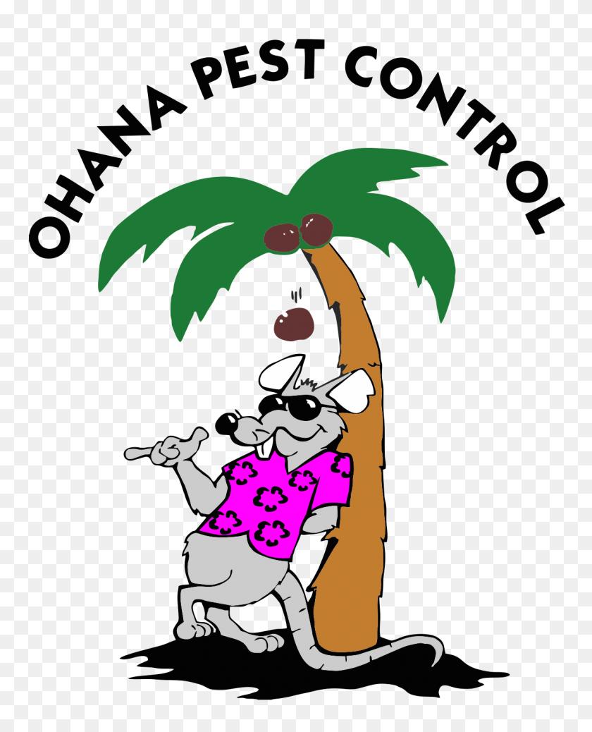 medium resolution of ohana pest control pest control clipart