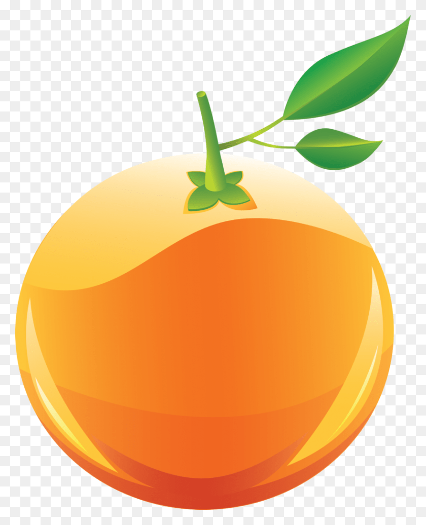 medium resolution of 818x1024 orange clipart png clip art belly button clipart