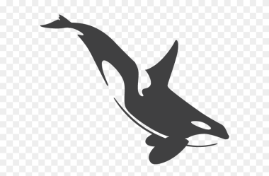 Orca Killer Whale Clipart Stunning free transparent png clipart images free download